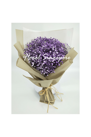 CF 05 - Baby's Breath - Floral Singapore