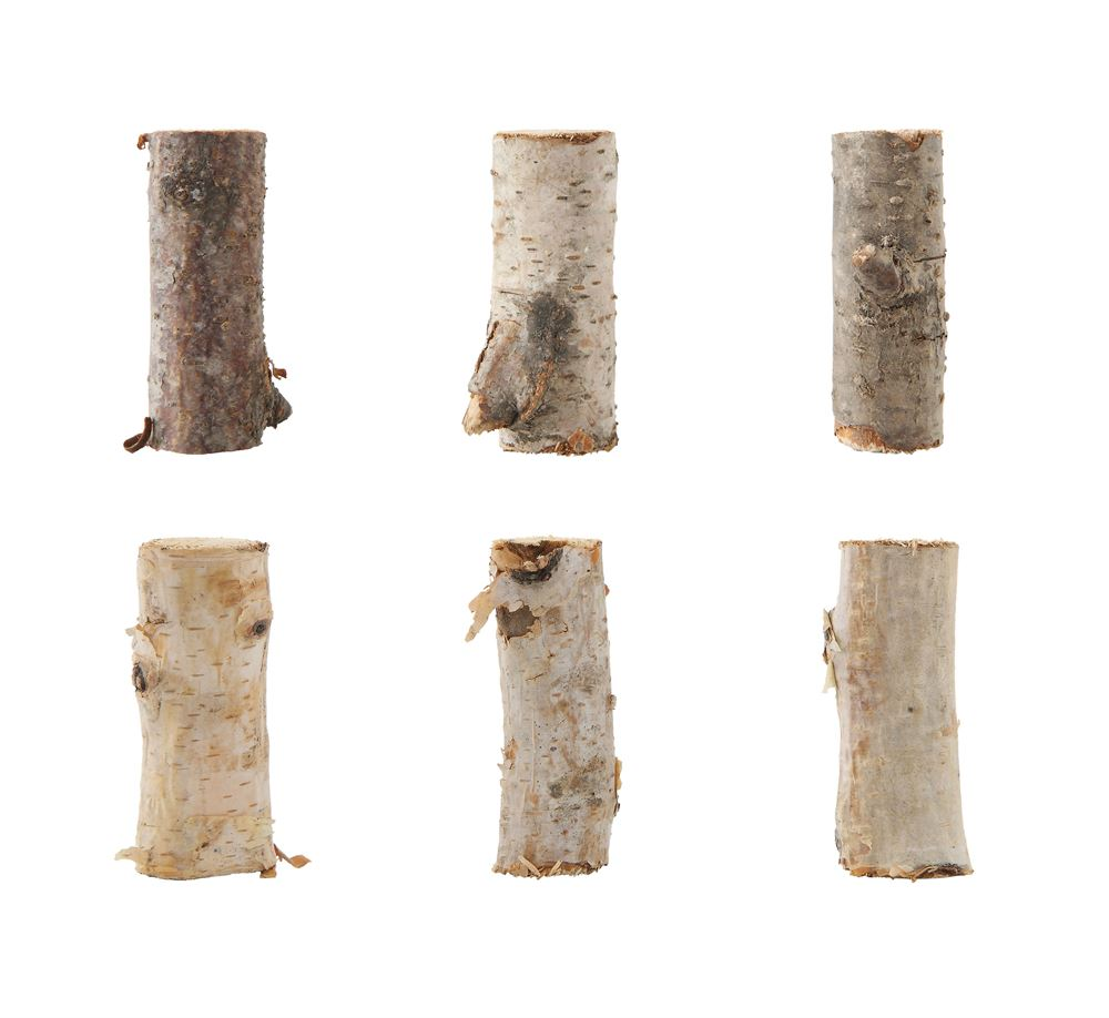 Birch Branch Pieces