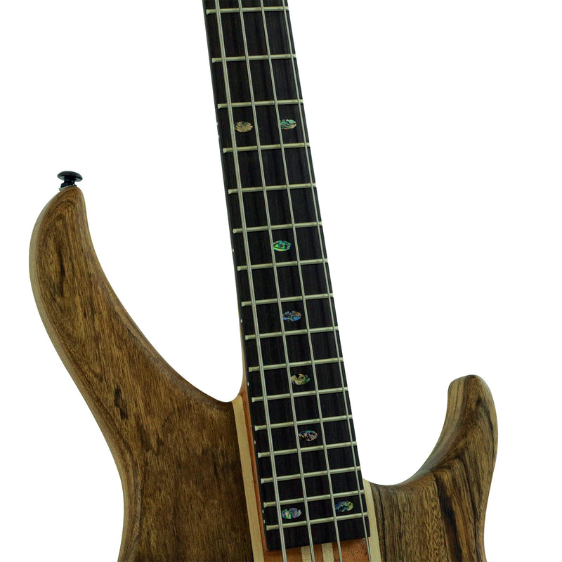2400-NL | Electric Bass
