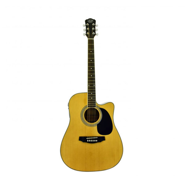 D-110CE | Acoustic Guitar