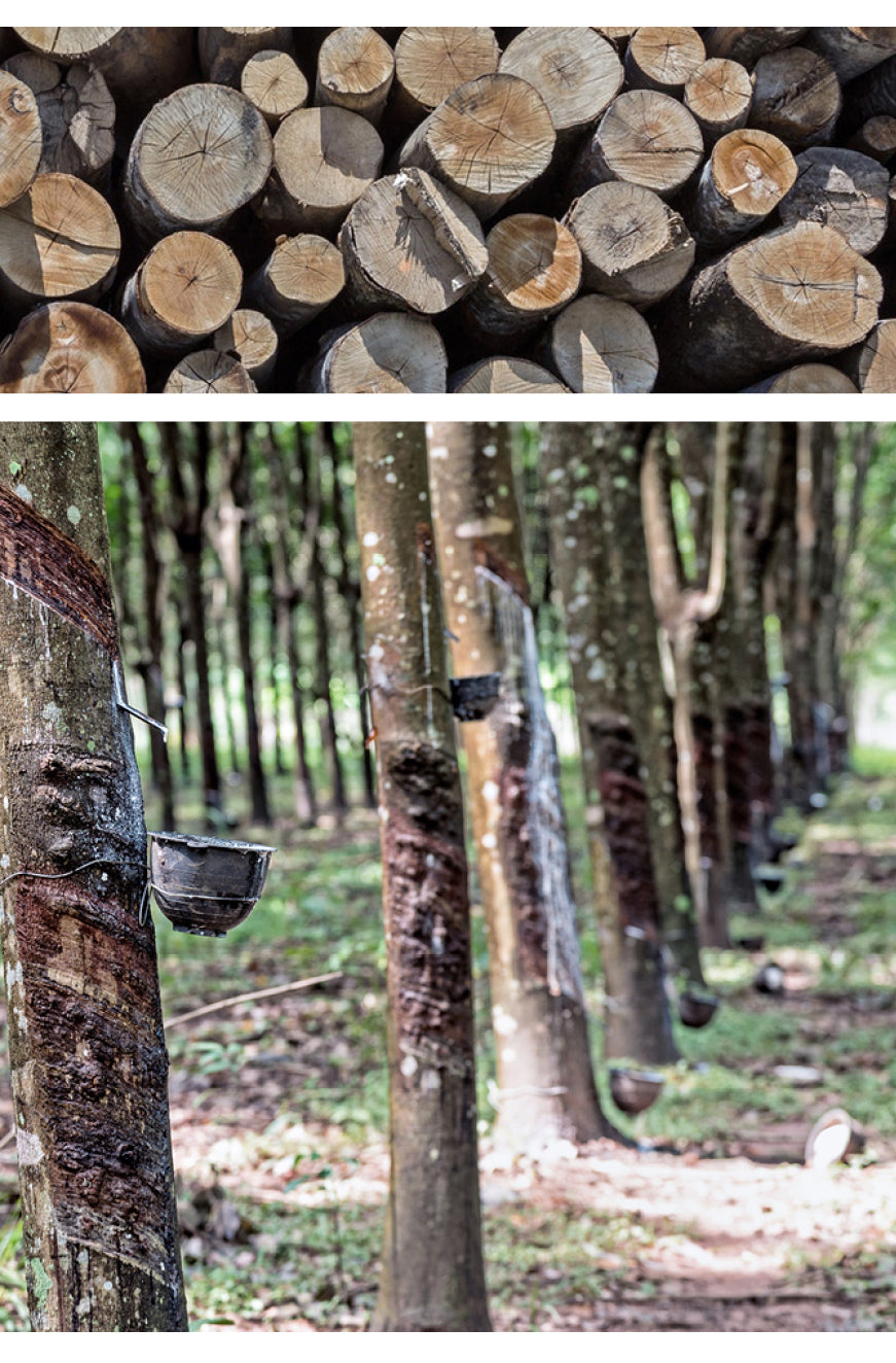 pecanpals by noferin are made from hevea wood