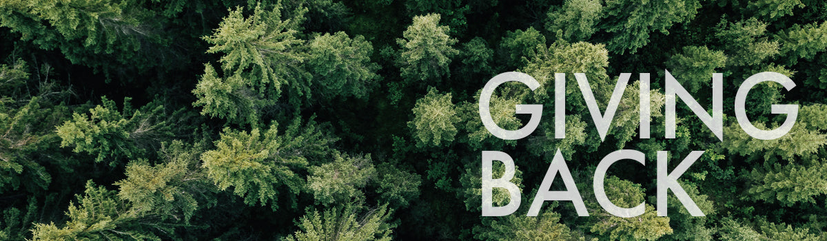with every purchase, noferin plants trees in a global reforestry initiative