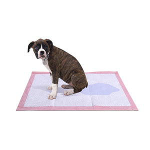 PaWz 50 Pcs 60x60 cm Pet Puppy Toilet Training Pads Absorbent Lavender Scent
