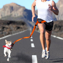 Load image into Gallery viewer, Adjustable Dog Hands Free Leash Waist Belt Buddy Jogging Walking Running Orange