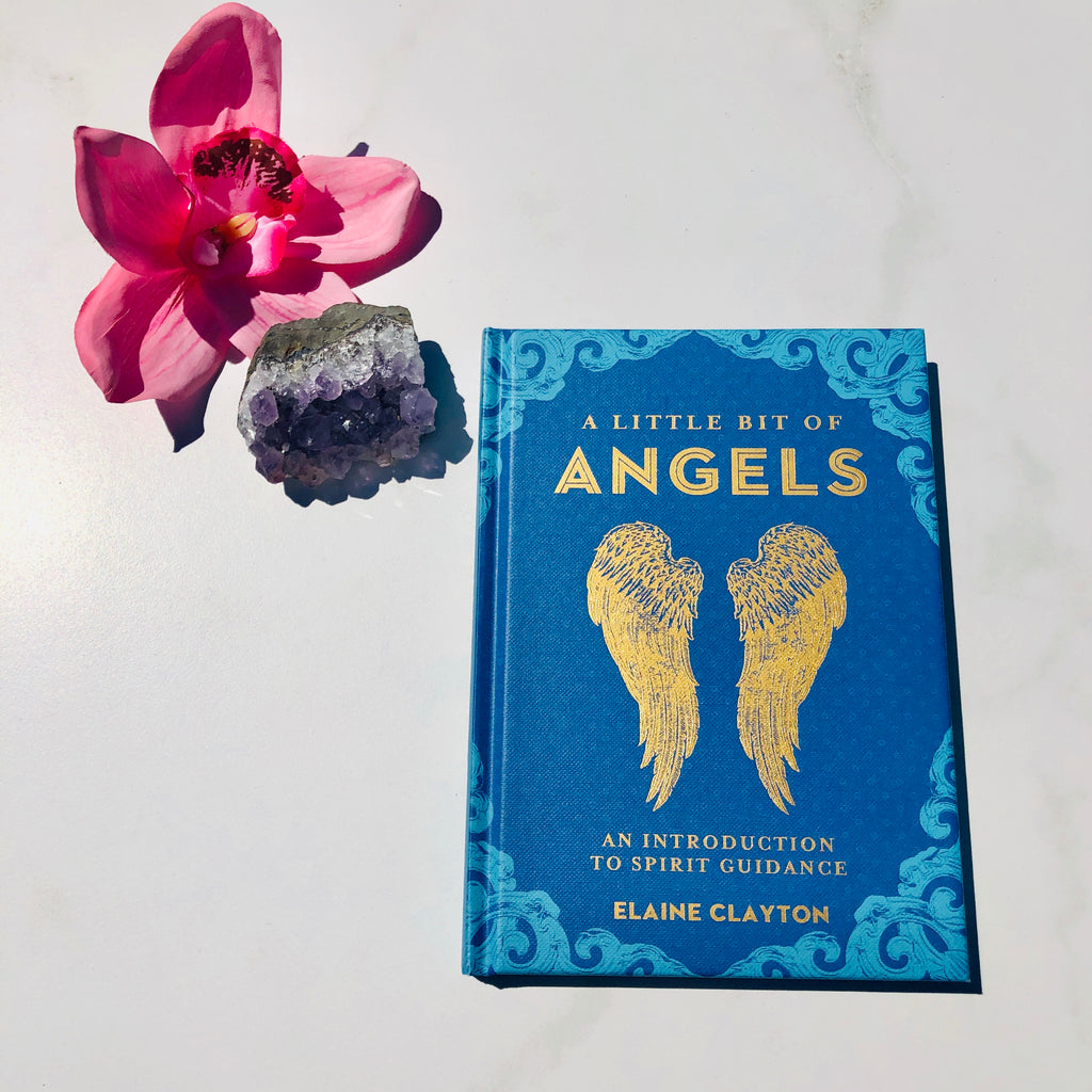Book x A little bit of Angels