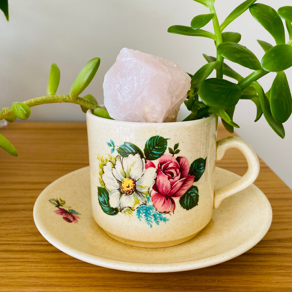 Boho Retro Cup + Succulents + Rose Quartz
