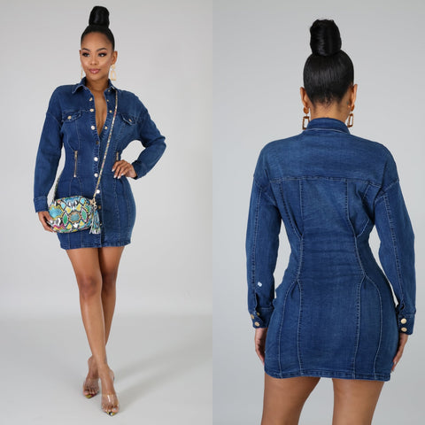 Carmela Denim Dress