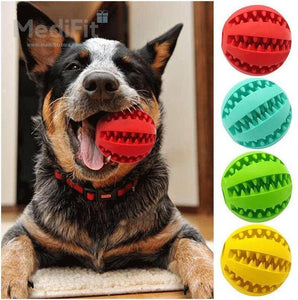 Canine Tooth Cleaning Dog Ball