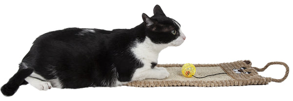 Cat Scratcher Lounge With Toy