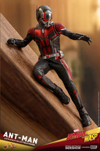 Load image into Gallery viewer, Hot-Toys-Wasp