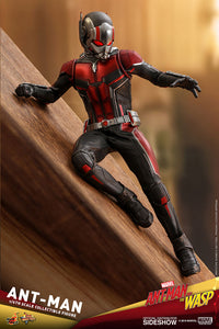 Hot-Toys-Wasp
