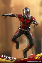 Load image into Gallery viewer, Hot-Toys-Antman