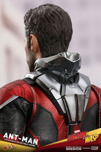 Load image into Gallery viewer, Hot-Toys-Paul-Rudd