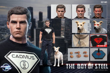 Load image into Gallery viewer, Hot-Toys-Superman