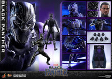 Load image into Gallery viewer, Hot-Toys-Tchalla