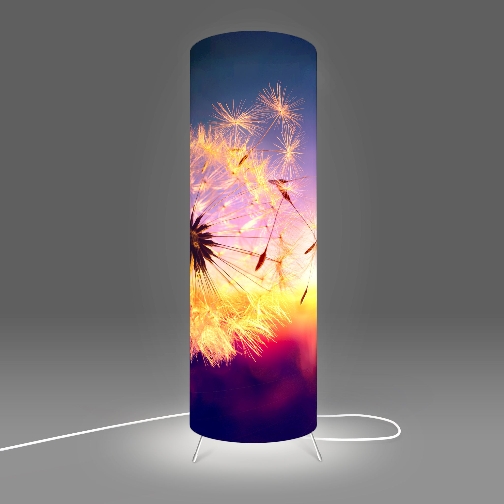Modern Lamp designed by Fotbee with image of a puff ball at sunset