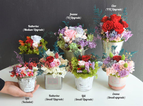 Petal+Eon preserved flower arrangements with real flowers that last a year