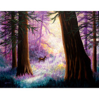 Morning Light Deep in the Redwoods Original Painting
