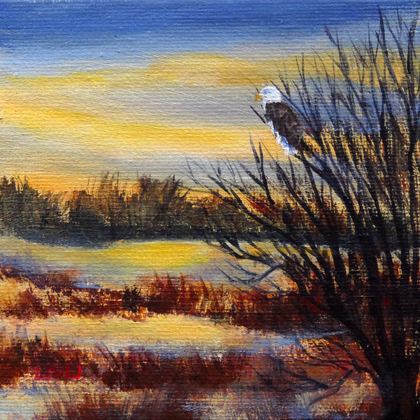Bald Eagle in Wetlands Original Mini Painting on Easel Laura Milnor Iverson Official Site
