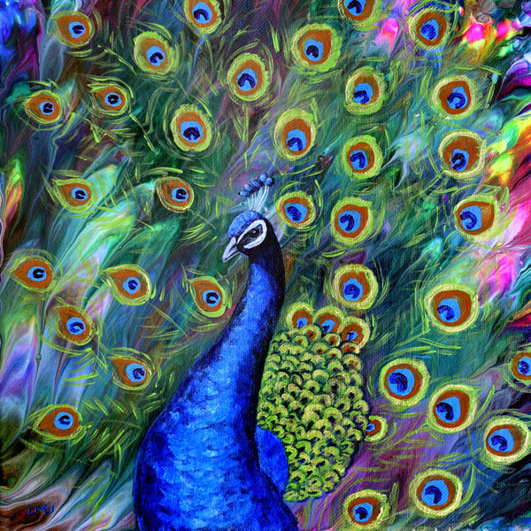 Peacock Original Painting 10x10 Square