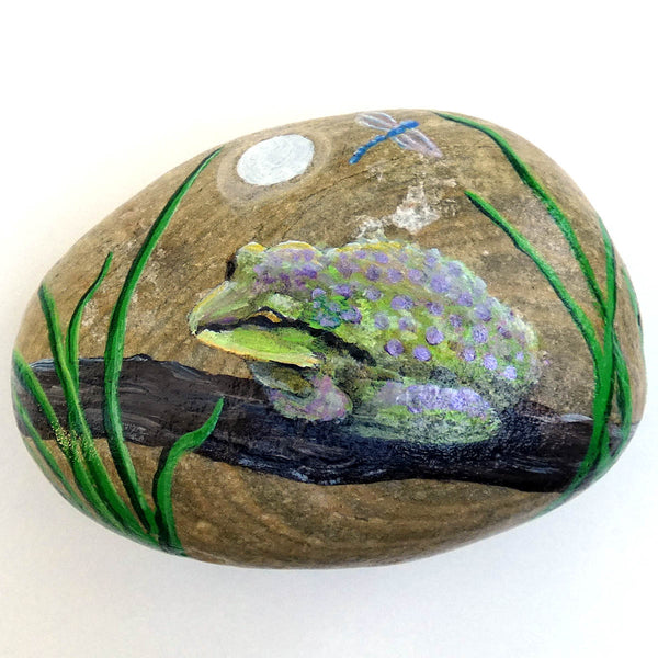 Chorus Frog and Dragonfly Painted Rock Laura Milnor Iverson Official Site