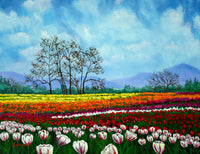 Tulip Fields Under White Fluffy Clouds Original Painting