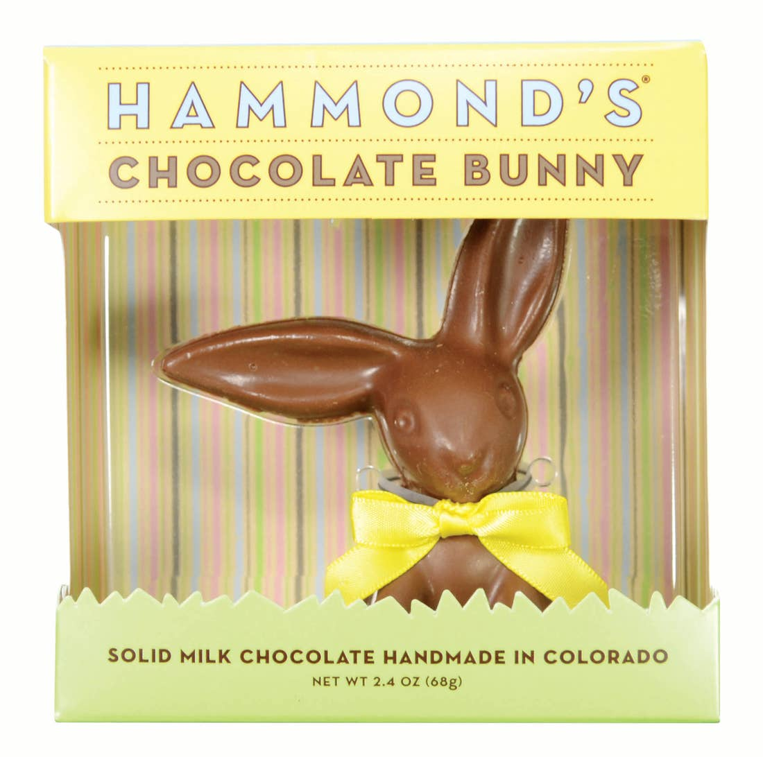 HAMMONDS - SMALL CHOCOLATE BUNNY