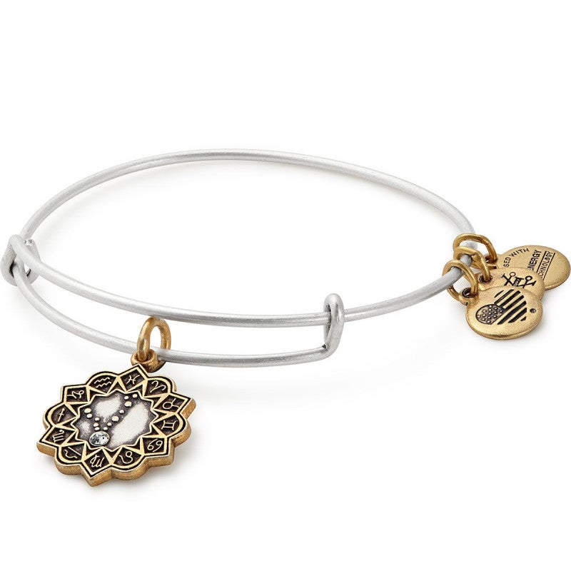 Pisces Two Tone Charm Bangle