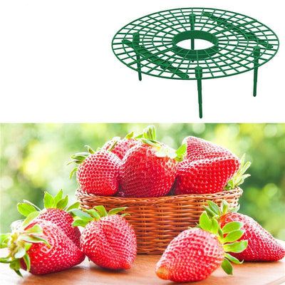 Strawberry Supports, Set of 5