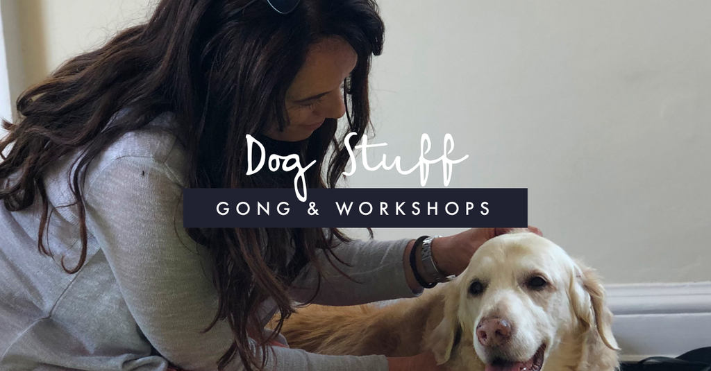 Dog Gong & Workshops