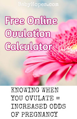 Ovulation Calculator - Calculate When You Are Most Fertile – BabyHopes