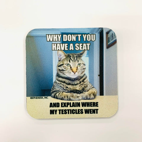 Cat Testicles Went Coaster