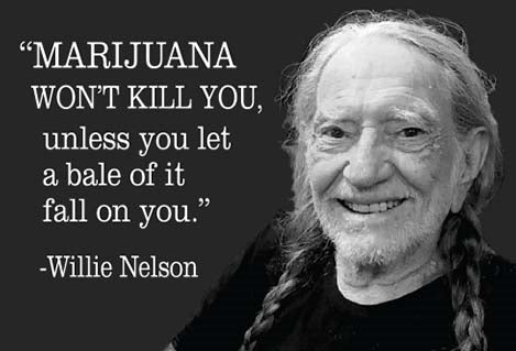 Marijuana Won't Kill You Magnet