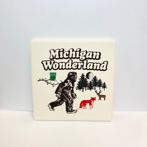 Michigan Wonderland Coaster