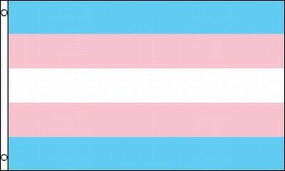 Transgender Flag 3 X 5 ft