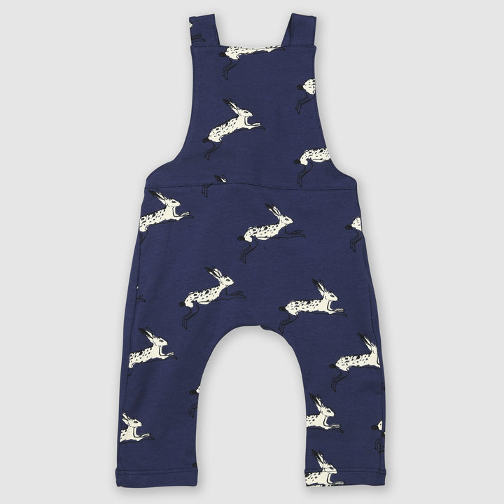 Painted Bunny Rabbit Dungarees