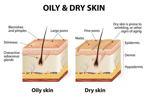 Difference between Oily skin and Dry Skin
