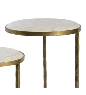 Bone Nesting Side Table