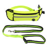 Zero Shock™ Leash - Handsfree Bungee Dog Leash