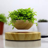 LeviPot™ - Magic Levitating Plant Pot