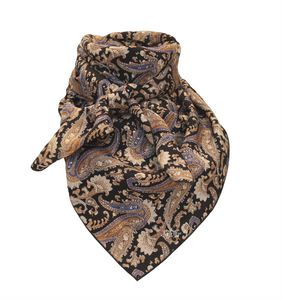 Tan and Black Pailsey Silk Wild Rag