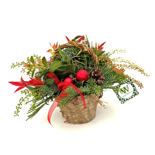 HOLIDAY BASKET PLANTER SMALL