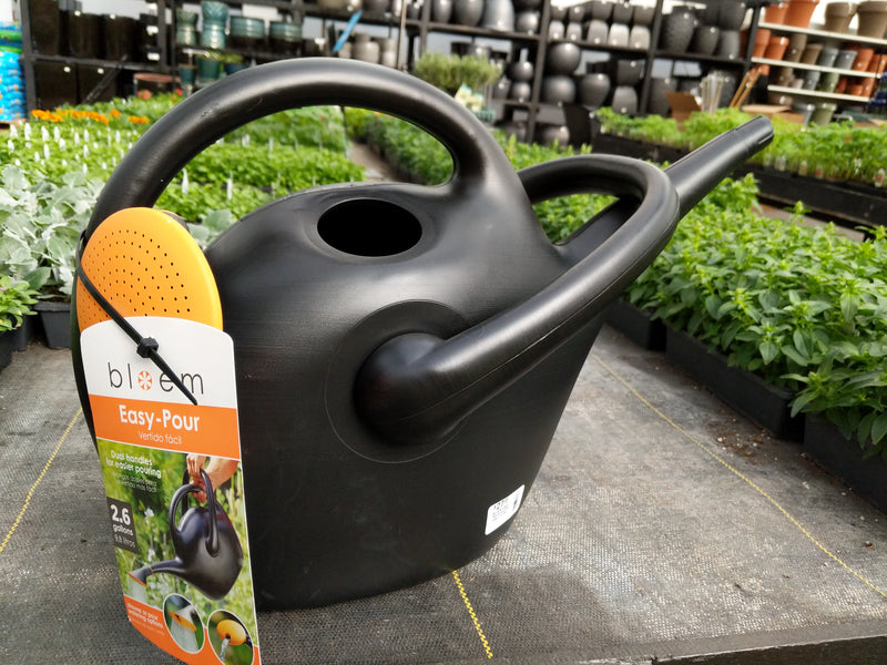 Easy-Pour Watering Can 2.6 gallon