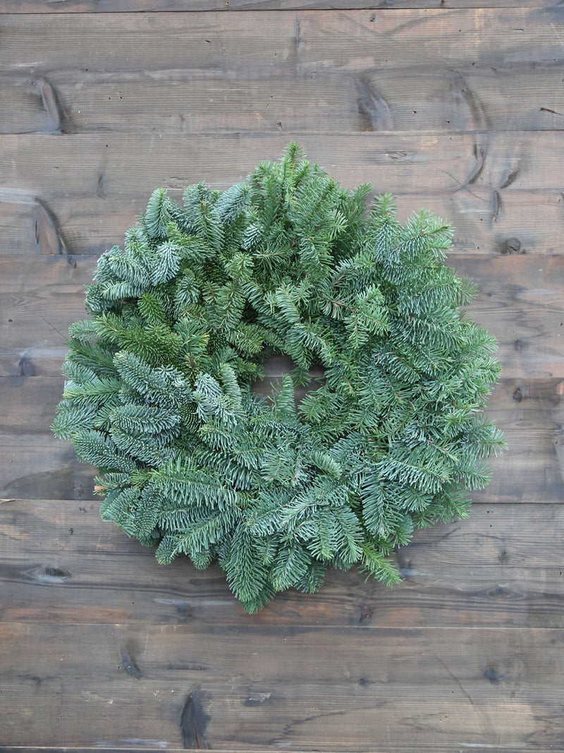 Plain Noble Wreath