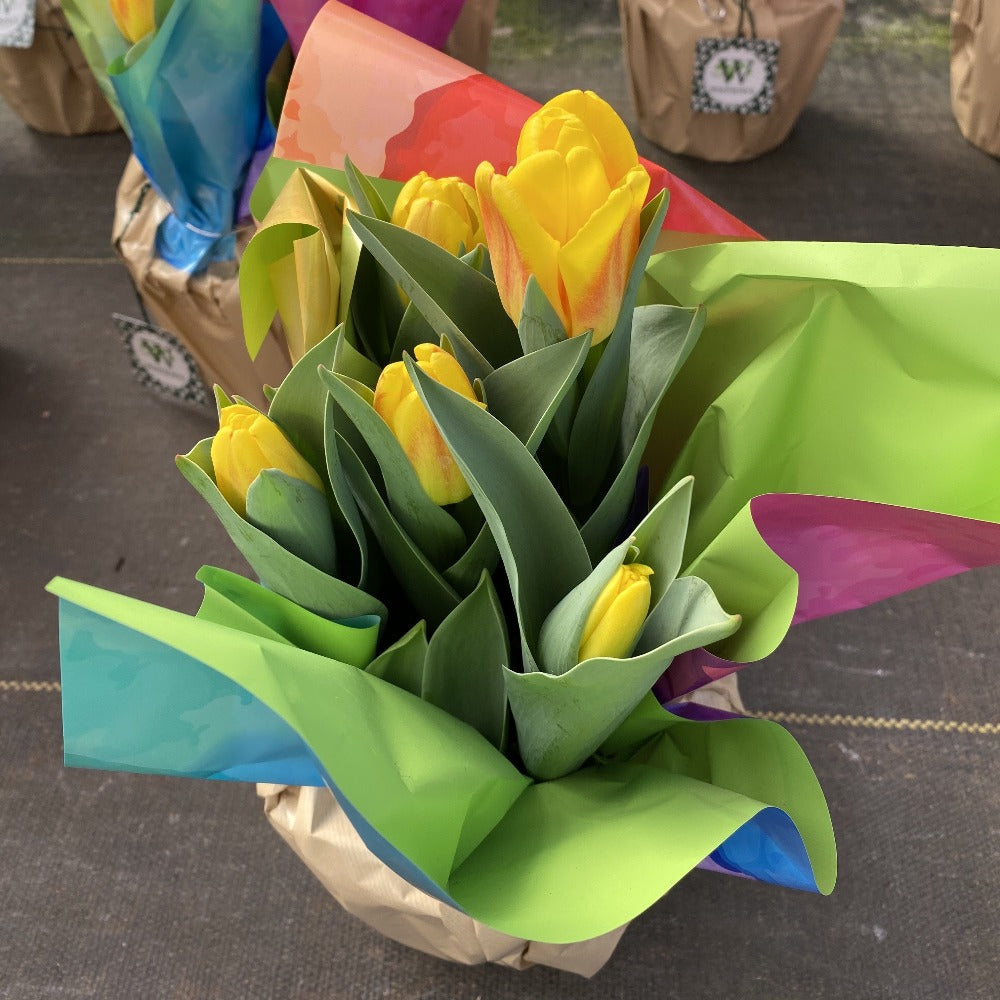 Potted Yellow Tulip 6""