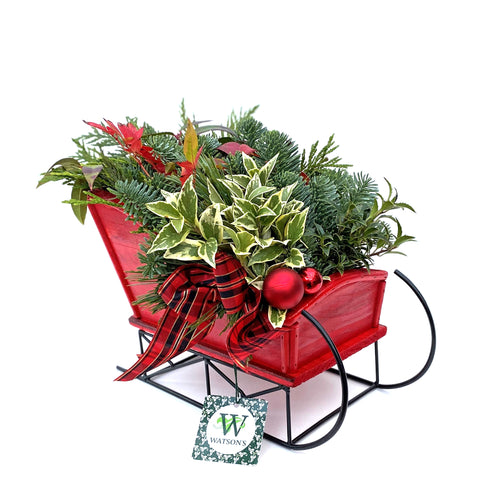 HOLIDAY SLED PLANTER