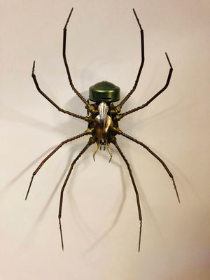 Johnson Century Spider (Sold Out)