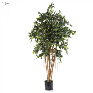 Artificial Ficus Retusa 1.8m