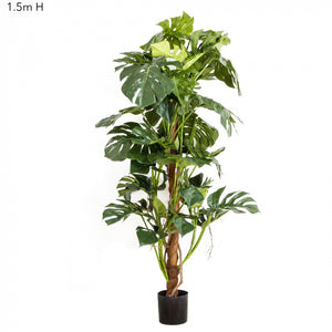 Artificial Split-Leaf Philodendron 1.5m