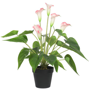 Artificial Flowering White & Pink Peace Lily / Calla Lily Plant 50cm